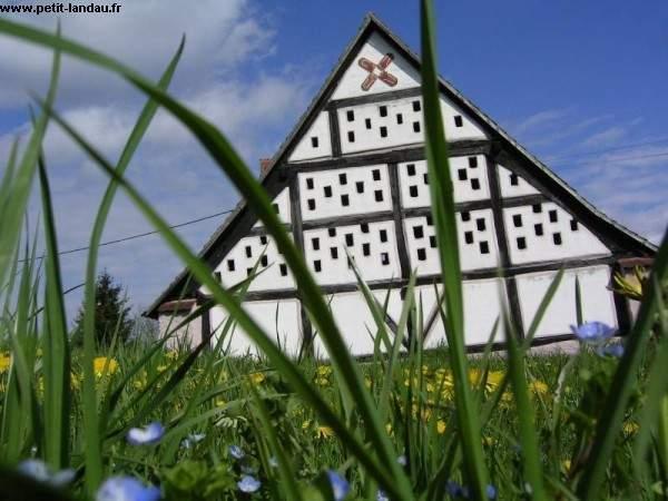 Village_25