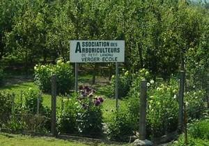 Arboriculteurs de Petit-Landau